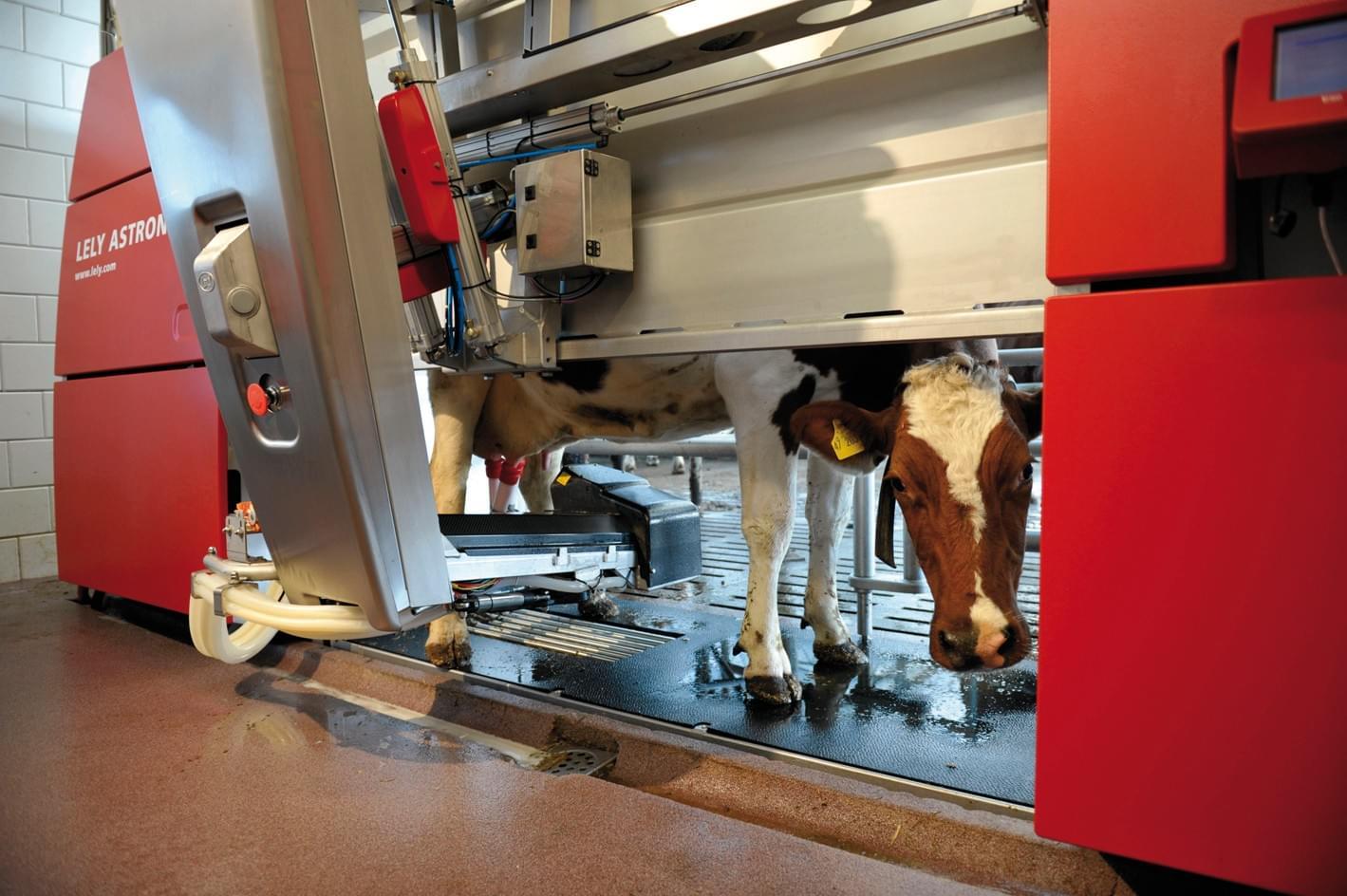 Roboti de muls Lely Astronaut A4