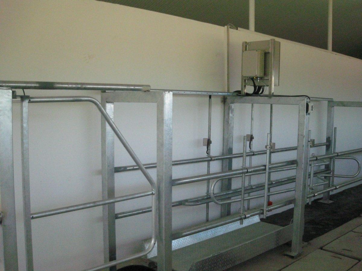 Poara de sortare pentru ferma de vaci
